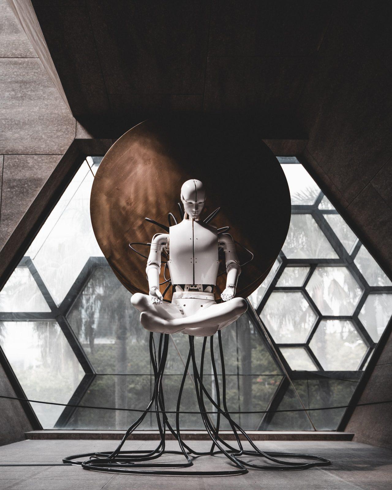 Хората и роботите